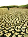 drought_150.jpg